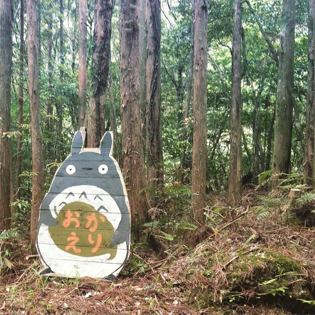 Gateway of hippy town in Yakushima. その昔旅行しているときに屋久島にはヒッピーが暮らす集落があると聞いていて。白川山と呼ばれる場所にかつての名残があり、山尾三省のアトリエもあるとのことだった。その入り口に・・・ #yakushima  #hippy